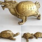 Biểu tượng phong thủy: Rùa nên đặt ở hướng Bắc